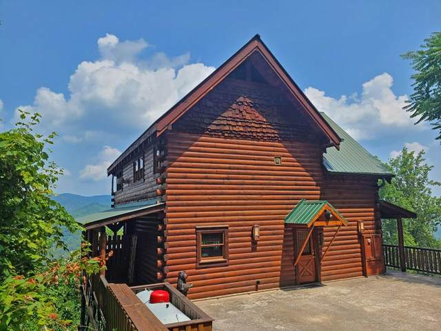 3446 Carsons Ridge Way, Sevierville, TN 37862 (#244157) :: The Terrell-Drager Team