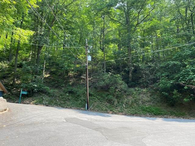 Lot 34 Sunshine Trail Old Field Ridge, Gatlinburg, TN 37738 (#244171) :: Billy Houston Group