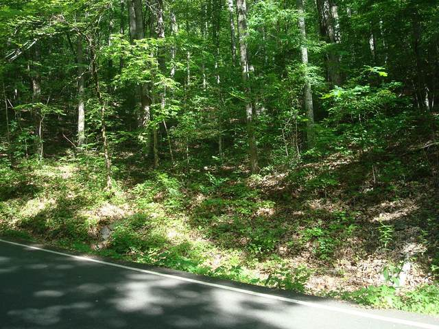 Lot 25-26 Bluff Mtn Road, Pigeon Forge, TN 37876 (#244200) :: The Terrell-Drager Team