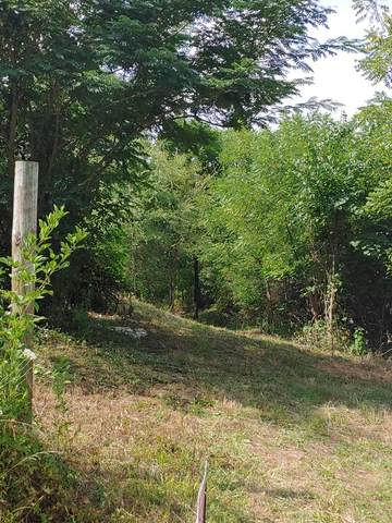 Lot 38 N Knob Creek Rd, Seymour, TN 37865 (#244225) :: Tennessee Elite Realty