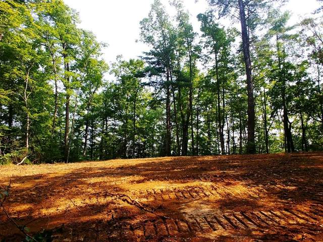 15.39 Acres Newcombe Branch  Way, Cosby, TN 37727 (#244229) :: Billy Houston Group