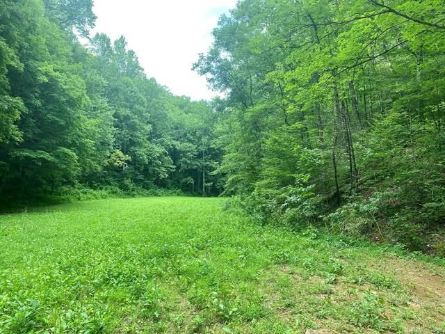Lightfoot Way, Sevierville, TN 37862 (#244239) :: Tennessee Elite Realty