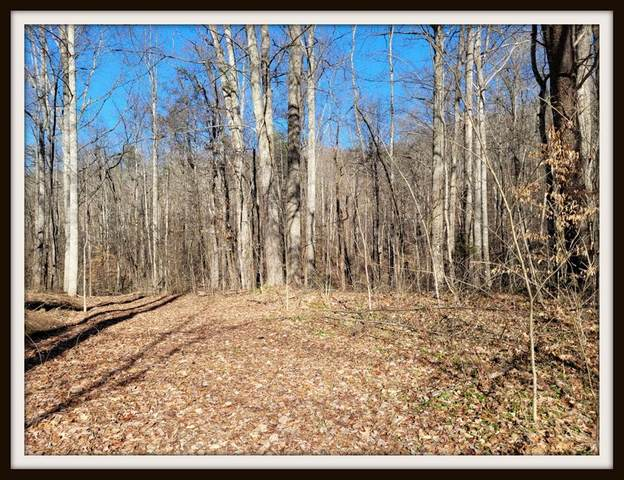 18.19 Acres Baker Way, Sevierville, TN 37876 (#244285) :: The Terrell-Drager Team