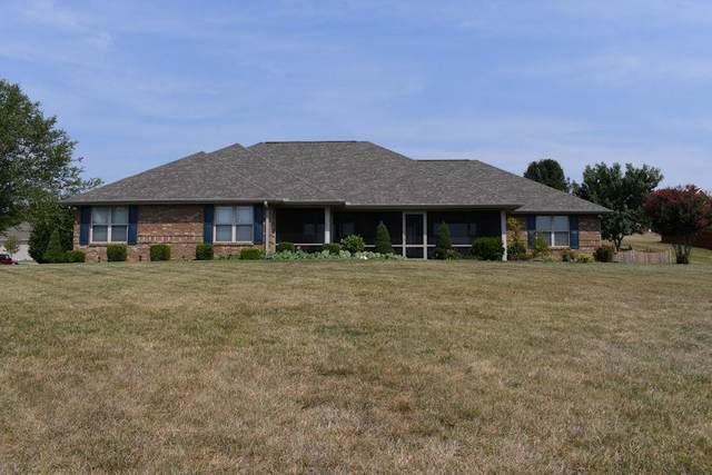 132 Illinois Avenue, Seymour, TN 37865 (#244315) :: Century 21 Legacy