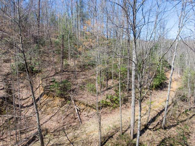 811 San Remo Drive, Gatlinburg, TN 37738 (#244335) :: Suzanne Walls with eXp Realty