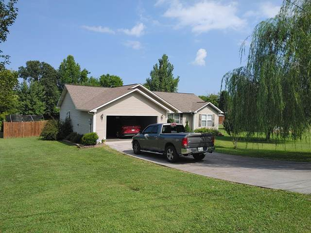 3118 Old Newport Highway, Sevierville, TN 37876 (#244436) :: Billy Houston Group