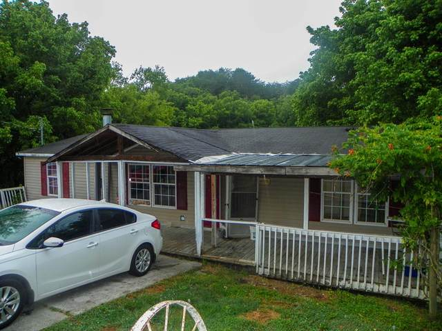 1029/1031 Millican Creek Rd, Sevierville, TN 37876 (#244439) :: Billy Houston Group