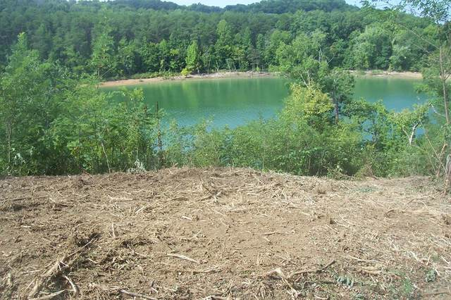 Lot 36 Sanctuary Shores Way, Sevierville, TN 37876 (#244452) :: Suzanne Walls with eXp Realty