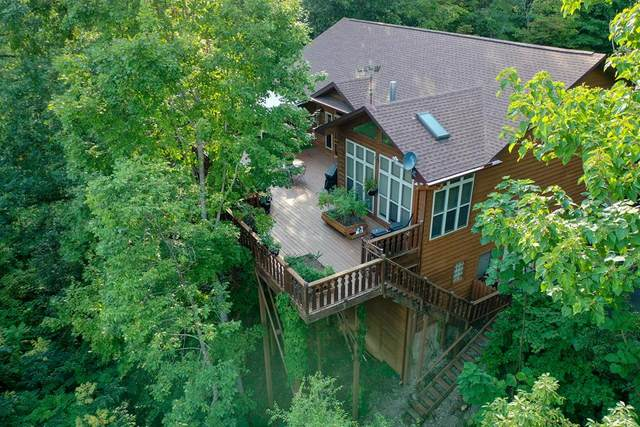 3009 Hailey Way, Sevierville, TN 37862 (#244454) :: The Terrell-Drager Team