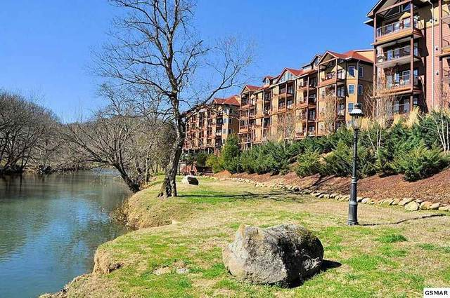 527 River Place Way Unit 533, Sevierville, TN 37862 (#244466) :: The Terrell-Drager Team