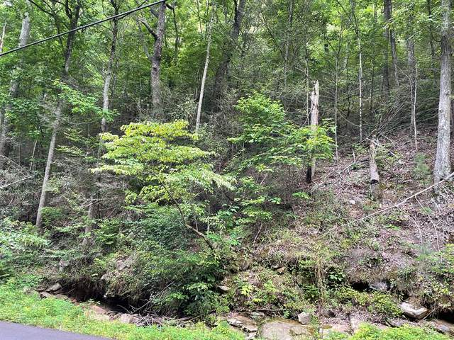 Lot 18 Alpine Dr, Sevierville, TN 37876 (#244499) :: The Terrell-Drager Team
