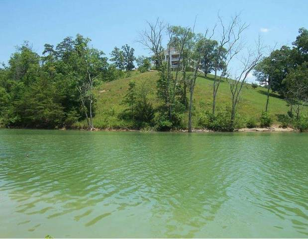 Lot 46 Stone Harbor Dr, Dandridge, TN 37725 (#244519) :: Suzanne Walls with eXp Realty