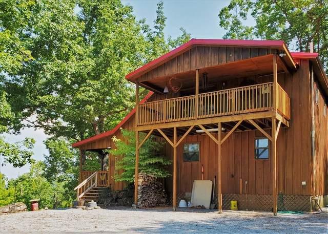 3159 Bear Mountain Ln, Sevierville, TN 37876 (#244691) :: The Terrell-Drager Team