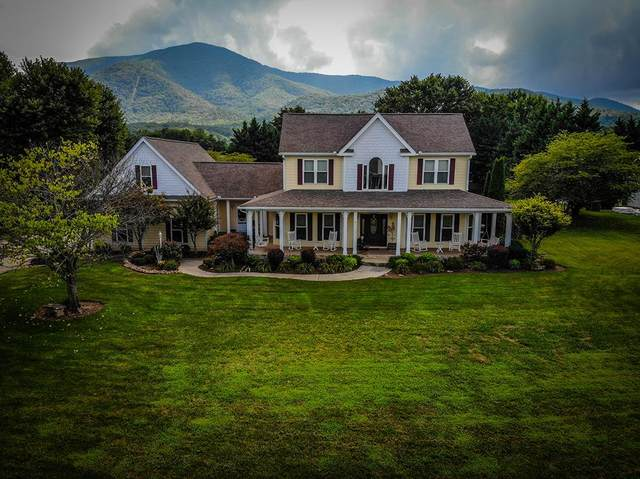 3529 Hiley Dr, Sevierville, TN 37862 (#244721) :: The Terrell-Drager Team