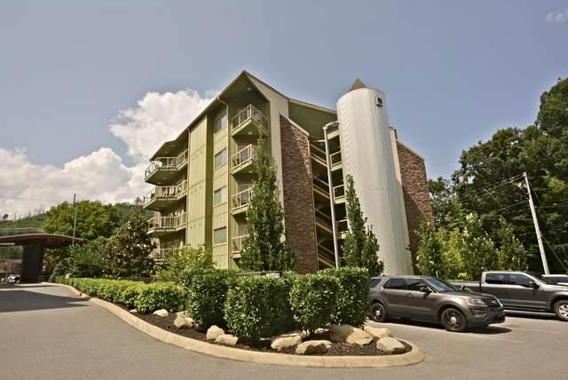 513 Mccarter Road Unit #4-S, Gatlinburg, TN 37738 (#244738) :: Colonial Real Estate