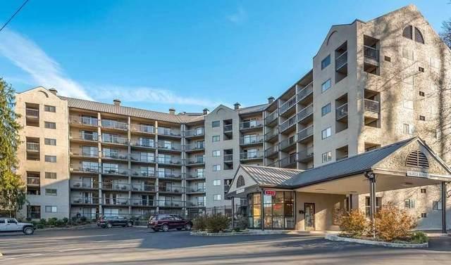 306 Baskins Creek Unit 410, Gatlinburg, TN 37738 (#244791) :: Colonial Real Estate