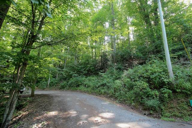 Lot 826 Orchard Dr., Sevierville, TN 37876 (#244800) :: The Terrell-Drager Team