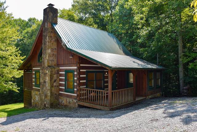 4093 Hickory Hollow Way, Sevierville, TN 37862 (#244803) :: The Terrell-Drager Team