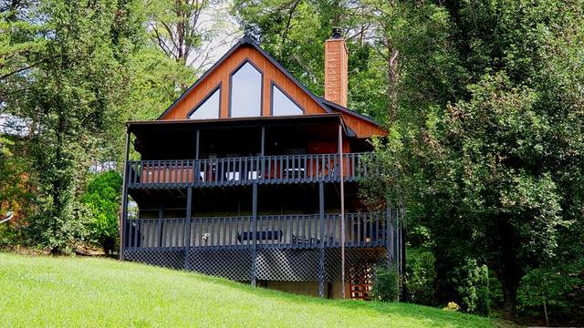 2439 Burke Ave, Sevierville, TN 37876 (#244815) :: Colonial Real Estate