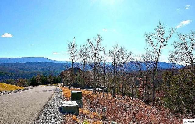 3042 Misty Bluff Trail, Sevierville, TN 37862 (#244836) :: Century 21 Legacy