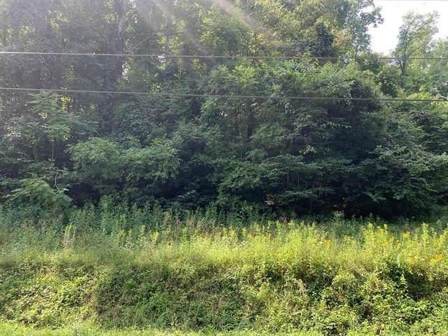 LT 3 Mcgaha Hollow Road, Dandridge, TN 37725 (#244845) :: Prime Mountain Properties