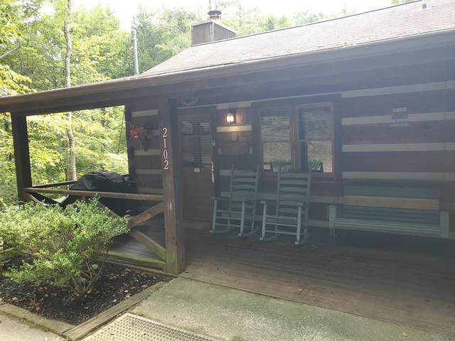 2102 Walt Price Rd Birds And Bees, Sevierville, TN 87862 (#244861) :: Century 21 Legacy
