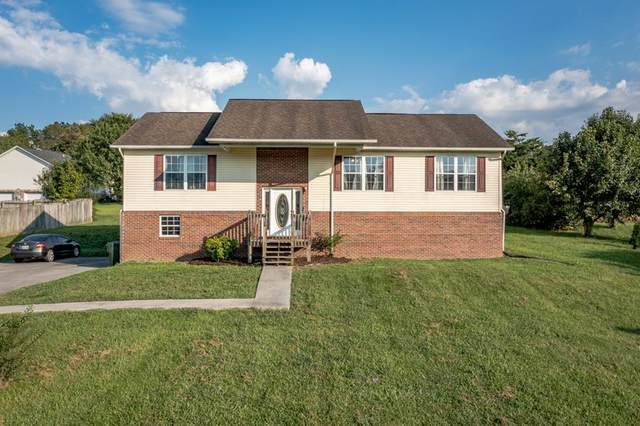 1590 Jasmine Trl, Sevierville, TN 37862 (#244865) :: Colonial Real Estate