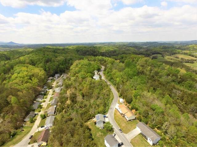 Hill Hollow Drive, Sevierville, TN 37876 (#244895) :: The Terrell-Drager Team