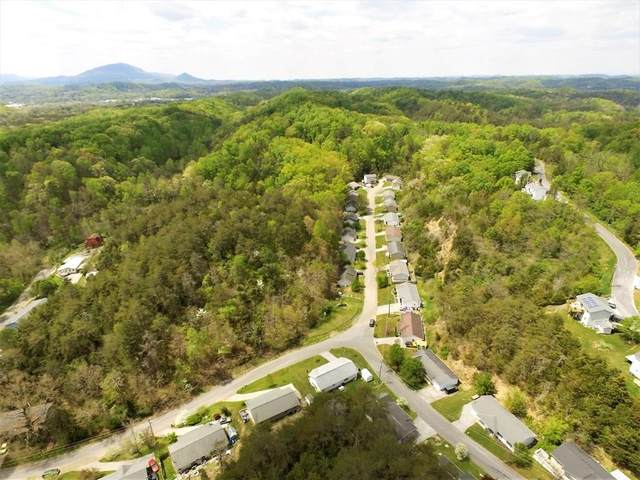 Hill Hollow Dr, Sevierville, TN 37876 (#244903) :: The Terrell-Drager Team