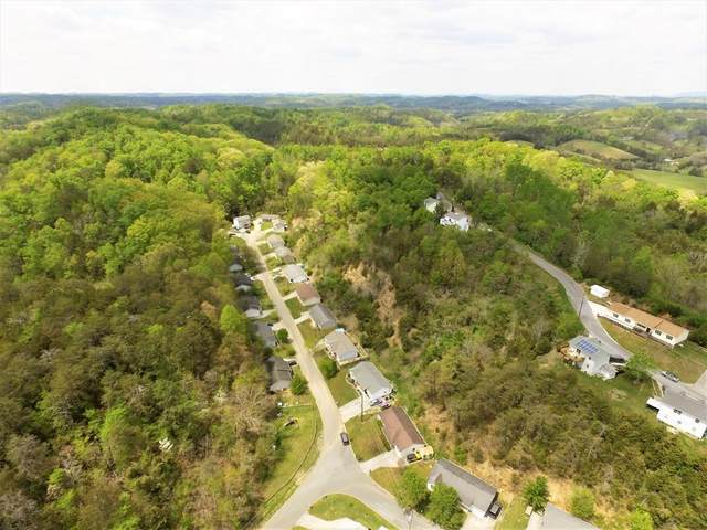 Hill Hollow Dr, Sevierville, TN 37876 (#244904) :: The Terrell-Drager Team