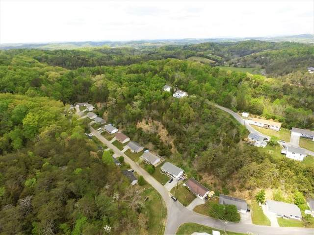 Hill Hollow Dr, Sevierville, TN 37876 (#244907) :: The Terrell-Drager Team