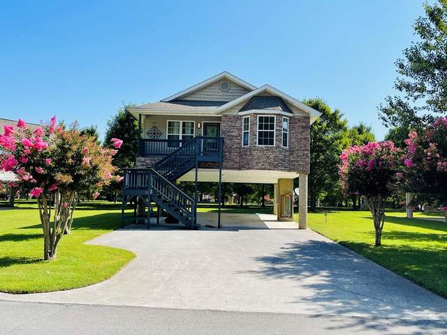 571 Tanasi, Pigeon Forge, TN 37863 (#244964) :: Suzanne Walls with eXp Realty