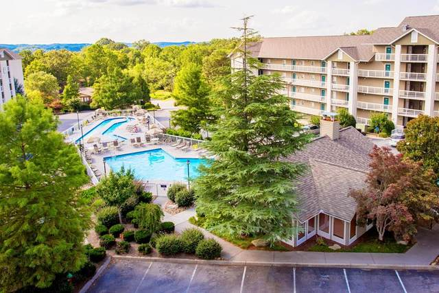 205 Ogle Drive Unit 214, Pigeon Forge, TN 37863 (#244965) :: The Terrell-Drager Team
