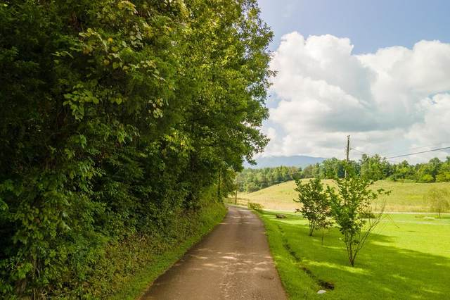 12.9 Acres Dunn Hollow Rd, Townsend, TN 37804 (#244989) :: Suzanne Walls with eXp Realty