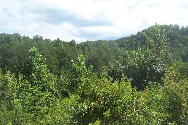 1876 Upper Middle Creek Rd Lot 2 James D. , Sevierville, TN 37876 (#245012) :: Suzanne Walls with eXp Realty
