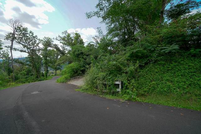 245 Browns Ridge Rd., Gatlinburg, TN 37738 (#245045) :: The Terrell-Drager Team