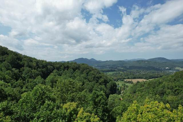 Lot 21 Kulpan Way, Sevierville, TN 37682 (#245068) :: Colonial Real Estate