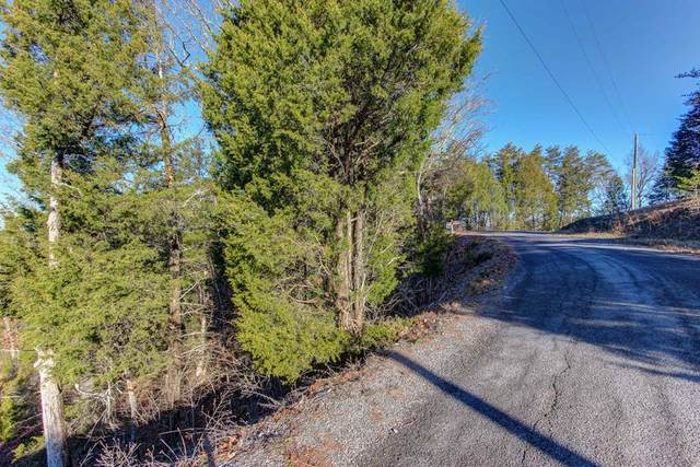 L29 Driftwood Circle, Sevierville, TN 37876 (#245074) :: Suzanne Walls with eXp Realty