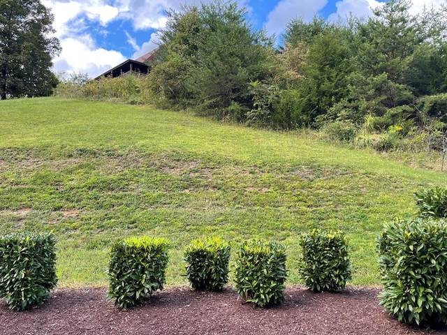 Lot 43 Wedge Tailed Ln, Sevierville, TN 37876 (#245079) :: Colonial Real Estate