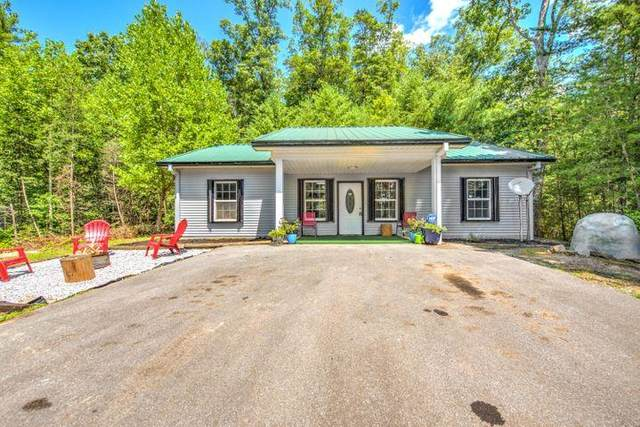 1320 Old Hag Hollow Way, Sevierville, TN 37876 (#245083) :: The Terrell-Drager Team