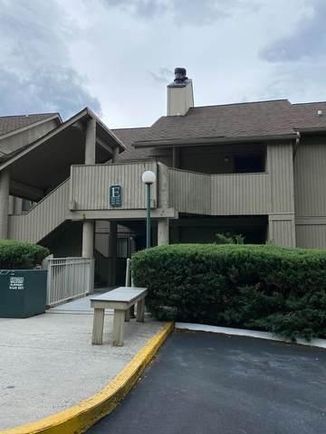 3710 Weber Road E101, Gatlinburg, TN 37738 (#245117) :: Colonial Real Estate