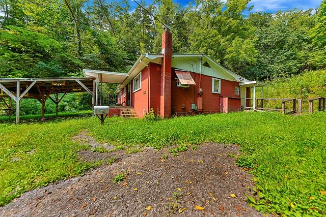 641 Pig Pen Hollow Road, Townsend, TN 37882 (#245120) :: Century 21 Legacy