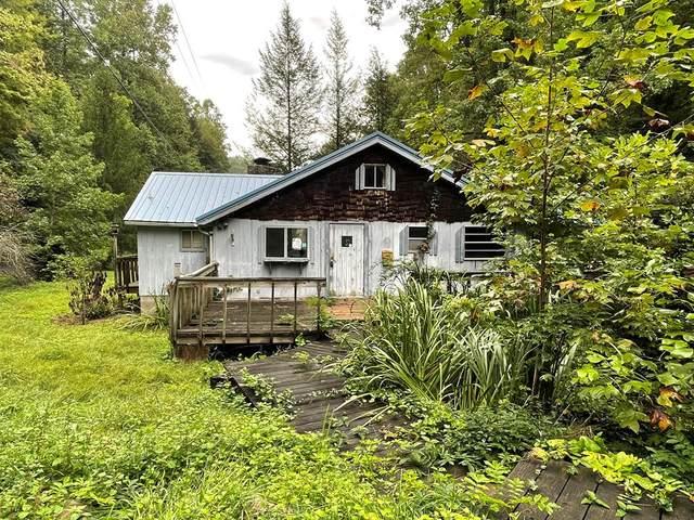 1114 Johns Branch Rd, Gatlinburg, TN 37738 (#245125) :: Collins Family Homes | Keller Williams Smoky Mountains