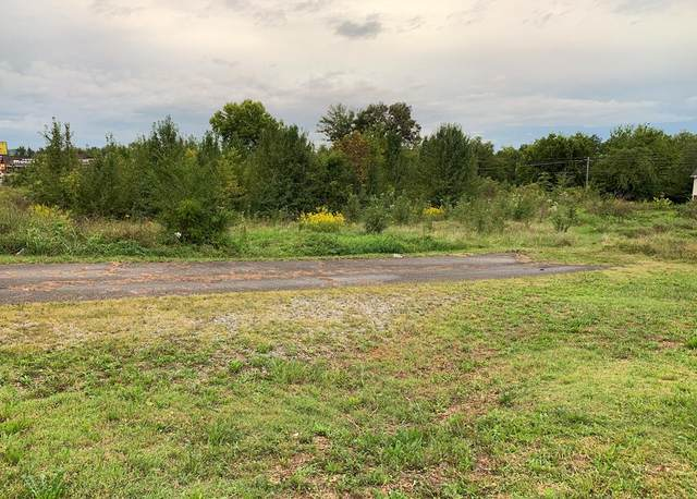 Lots 50 & 51 Winfield Dunn Pkwy, Sevierville, TN 37876 (#245128) :: Colonial Real Estate