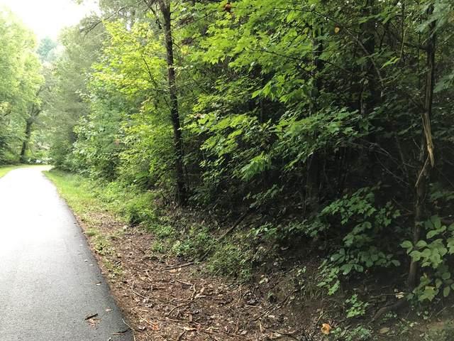Sencebaugh Drive, Sevierville, TN 37876 (#245134) :: Colonial Real Estate