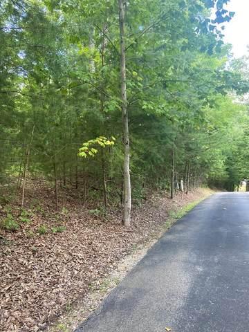 Redtail Rd, Sevierville, TN 37862 (#245152) :: Prime Mountain Properties