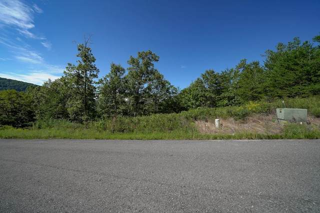 Lot 13 Mountain Ash Way, Sevierville, TN 37876 (#245154) :: The Terrell-Drager Team