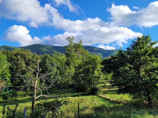 Lot 3 Covemont Road 1.83 Residentia, Sevierville, TN 37862 (#245156) :: The Terrell-Drager Team