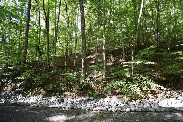 Lot 33R Whipoorwill Hill Way, Sevierville, TN 32862 (MLS #245165) :: Nashville on the Move