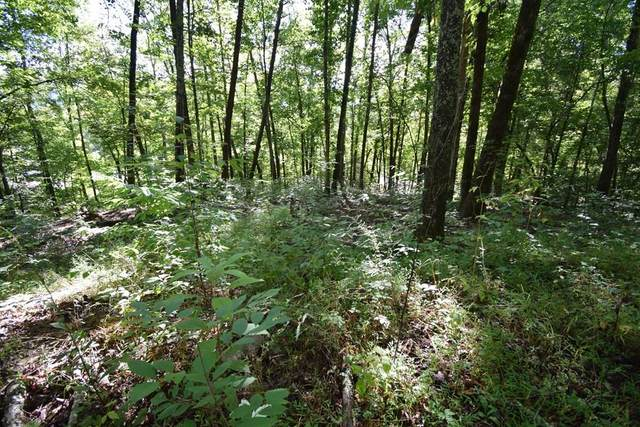 Lots 12 & 13 Whipoorwill Hill Way, Sevierville, TN 37862 (MLS #245166) :: Nashville on the Move